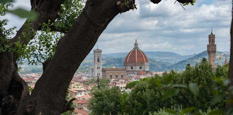Distant view of Florence Italy through the trees