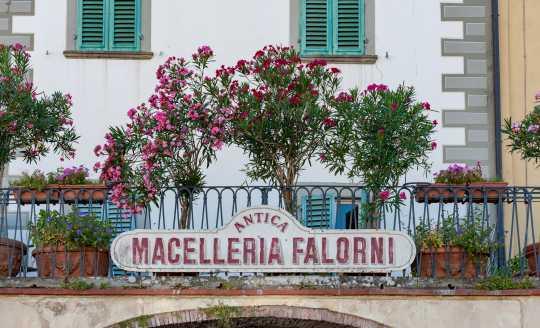 Storefront sign Macelleria Falorni, butcher shop in Greve, Italy
