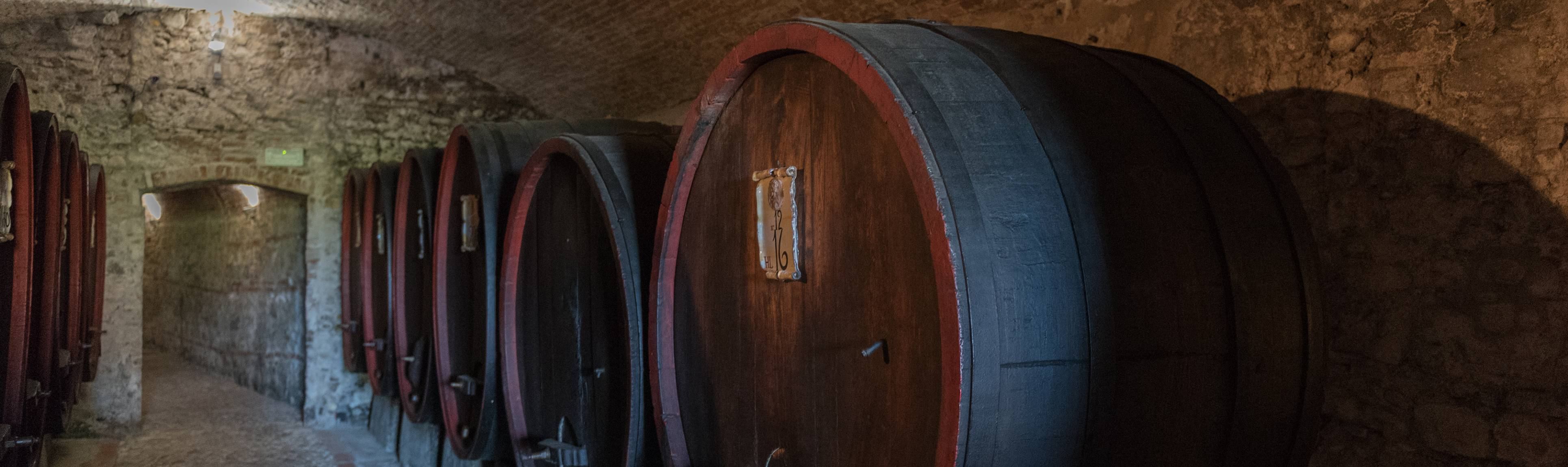Large wooden wine barrels along cellar wall in Italy