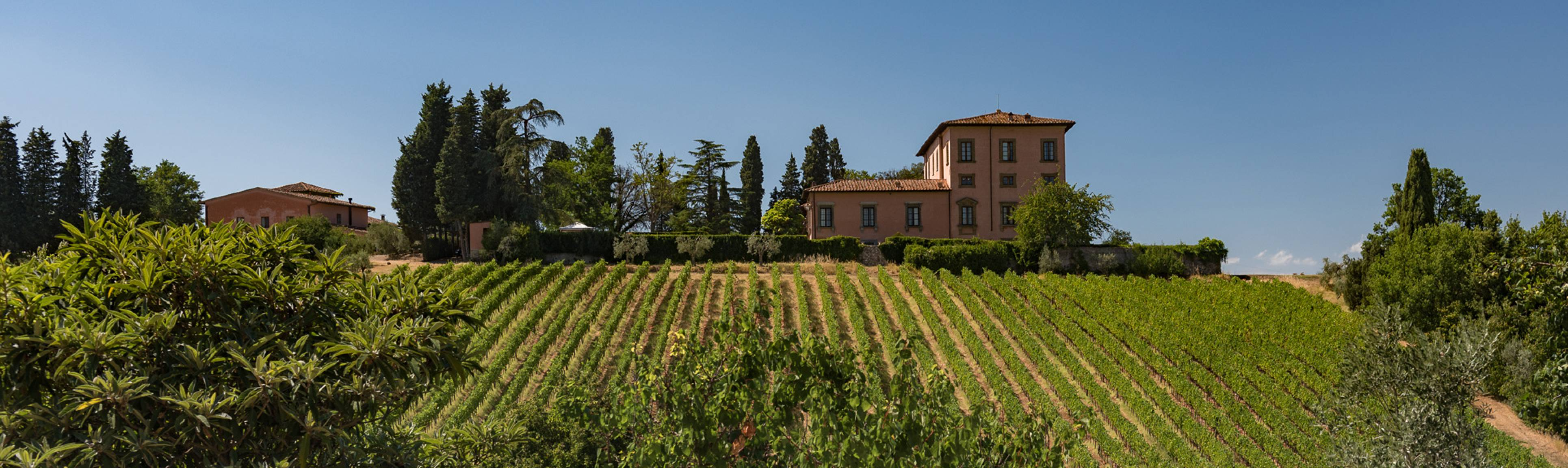 View of Tuscan Villa overlooking vineyards