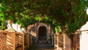 Walk with lush greenery at Villa d'Este in Tivoli